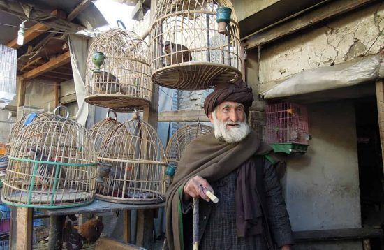Man with bird cages Kabul Afghanistan