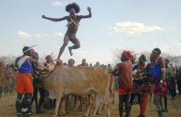 Bull Jumping Ceremony, Hamer